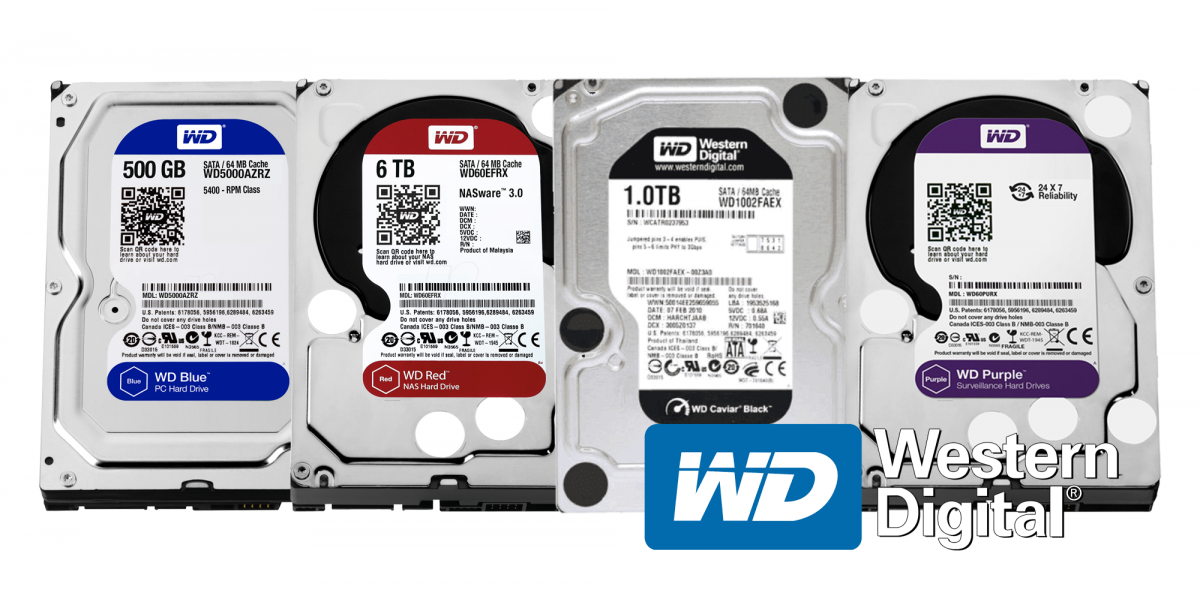 WD Blue vs. Black vs. Purple & Red – Which HDD to Purchase