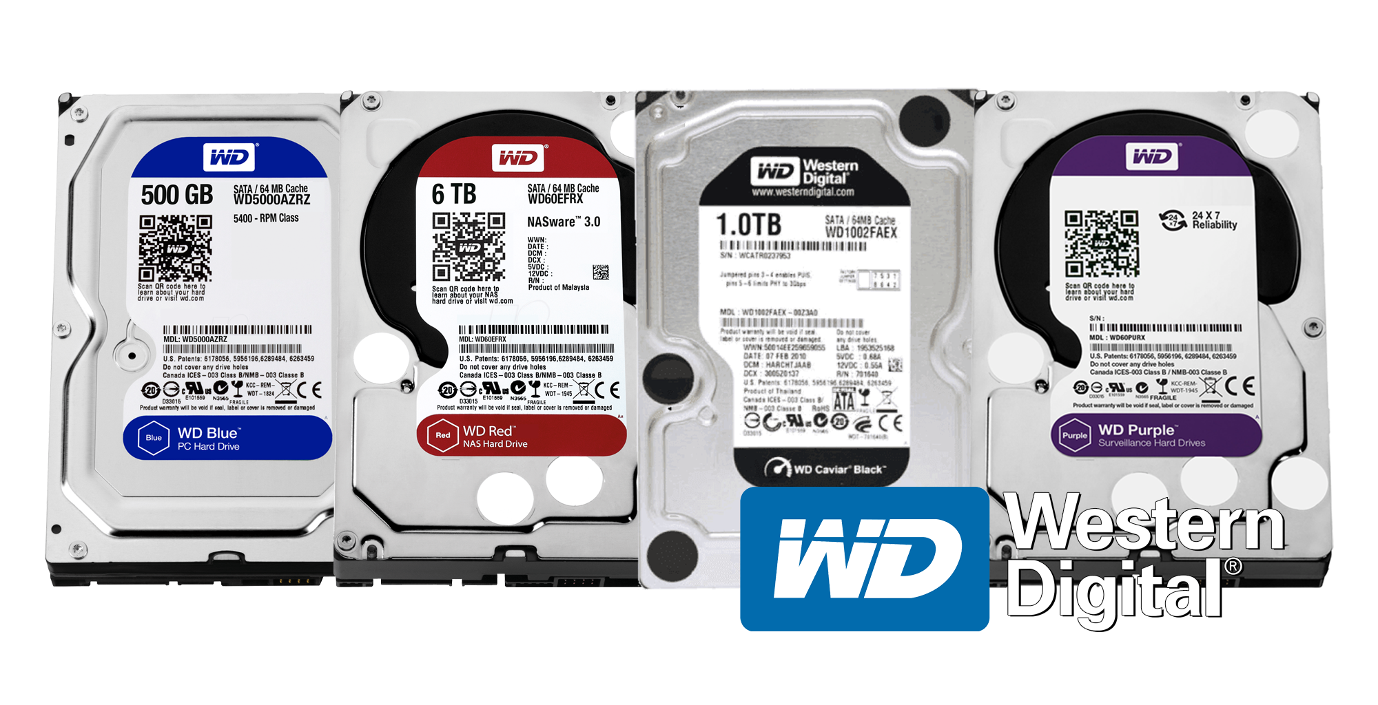 Get a Drive that Won't Fail on you! WD Blue vs. Black vs. Purple & Red